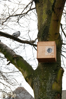 One of the Mark III Time-Lapse Pinhole Cameras in situ in Derby, during production of A Month Of Nights, Derby. (Image included to give an idea of nestbox scale) Copyright Anthony Carr