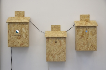Three bird boxes installed in the exhibition which accompanied the In Search Of Darkness (Lumen) residency at Grizedale Visitor Centre Project Space, Lake District, Sept 2018. Copyright Anthony Carr